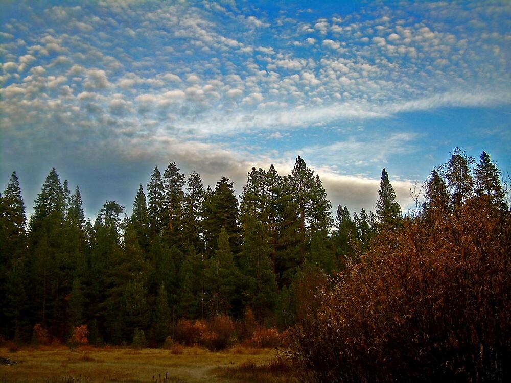 Puffy clouds over the High Sierra by Edward Henzi