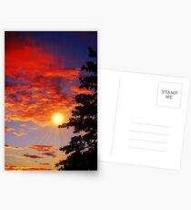 Sunrays Postcards