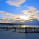 The Bluest Sky After Hurricane Matthew by Dawne Dunton