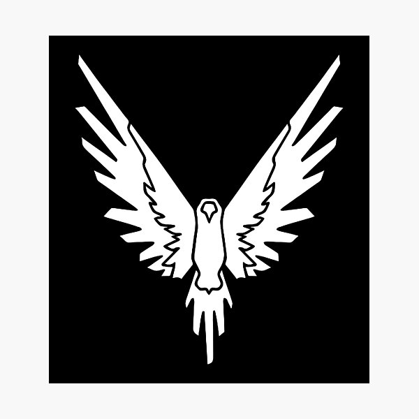 WHITE BIRD YOUTUBER Photographic Print