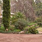 Holberry House Garden, Nannup, Western Australia #2 by Elaine Teague