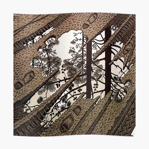 Escher Póster