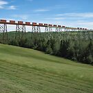 Train Crossing the Salmon River Trestle by Steve Boyko