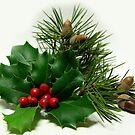 Christmas Greetings by jerry  alcantara