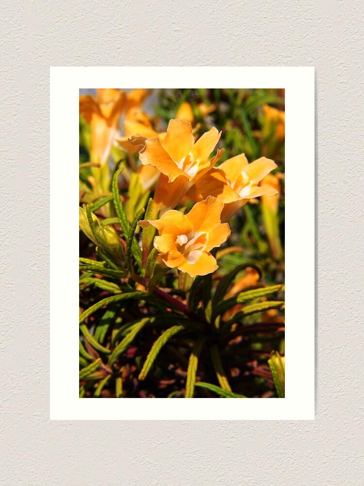Alternate view of Floral Art Print