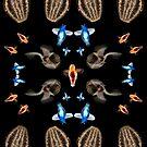Pteropod Food Web by MicrocosmFilm