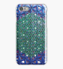 THE DIVINE BLUEPRINT OF REALITY IN CREATION iPhone Case/Skin