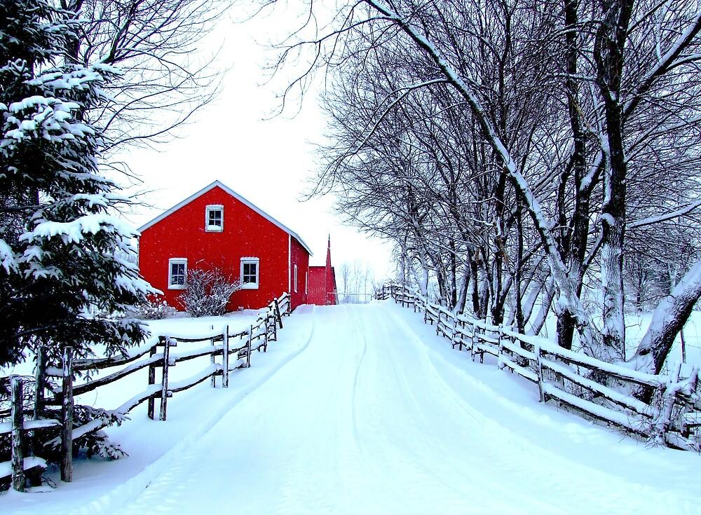 Winter Entrance by marchello