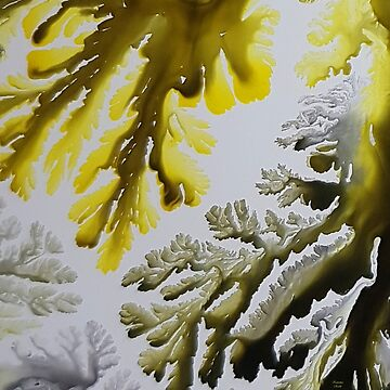 Corals, acrylic ink on canvas by Katarinart