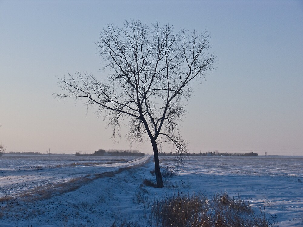 One Tree Road by Geoffrey