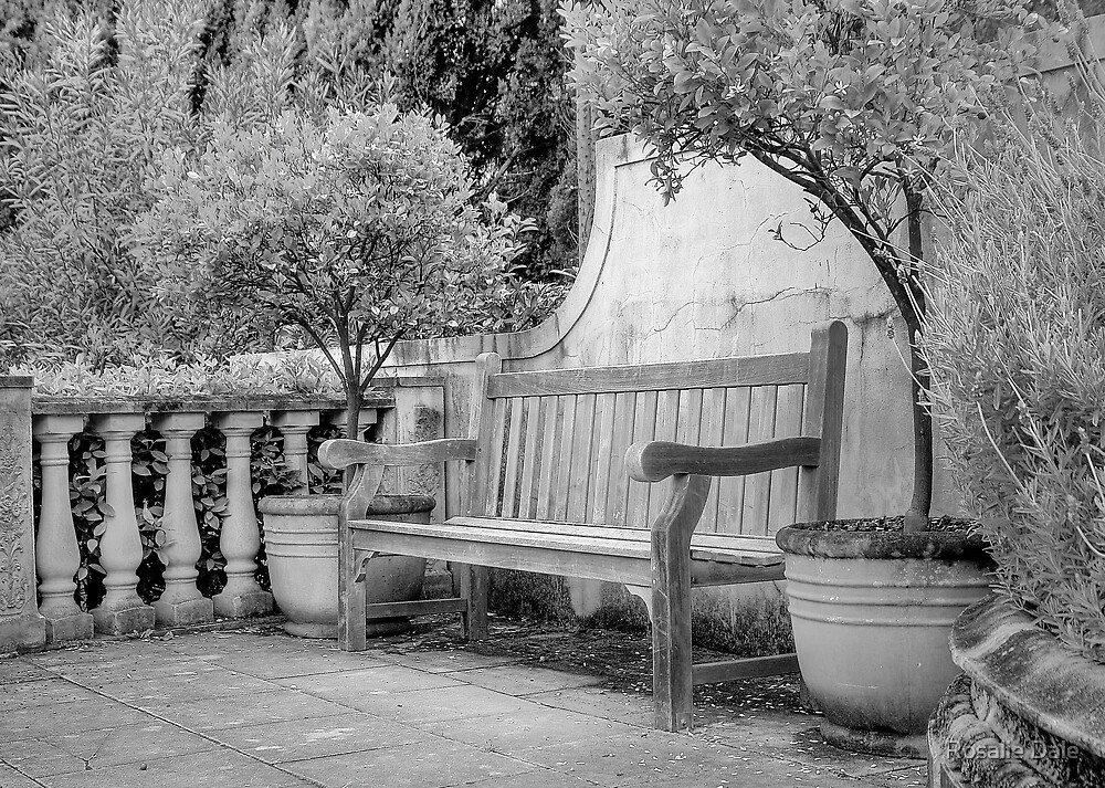 Mediterranean Bench ~ No 2 by Rosalie Dale