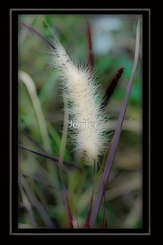 Fox Tail by Jenifer