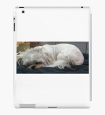 Louie iPad Case/Skin