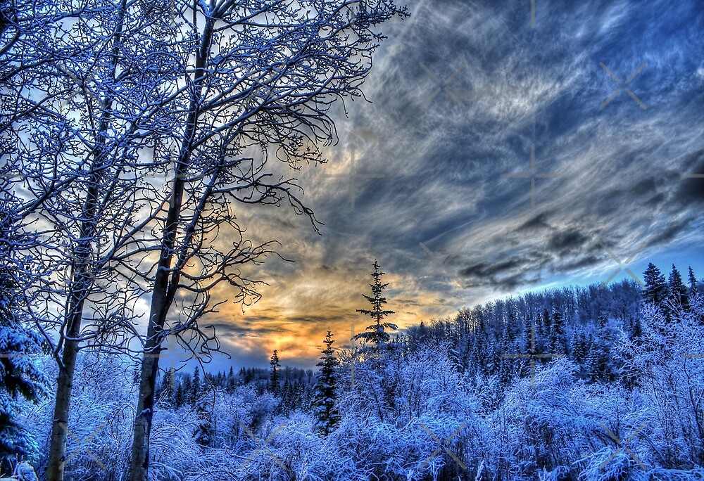 Cariboo Sunrise by Skye Ryan-Evans