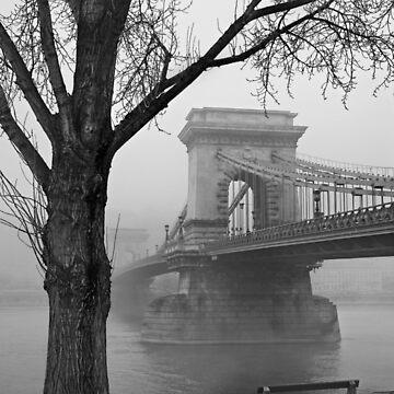 Széchenyi Chain Bridge - Budapest by Cretense72