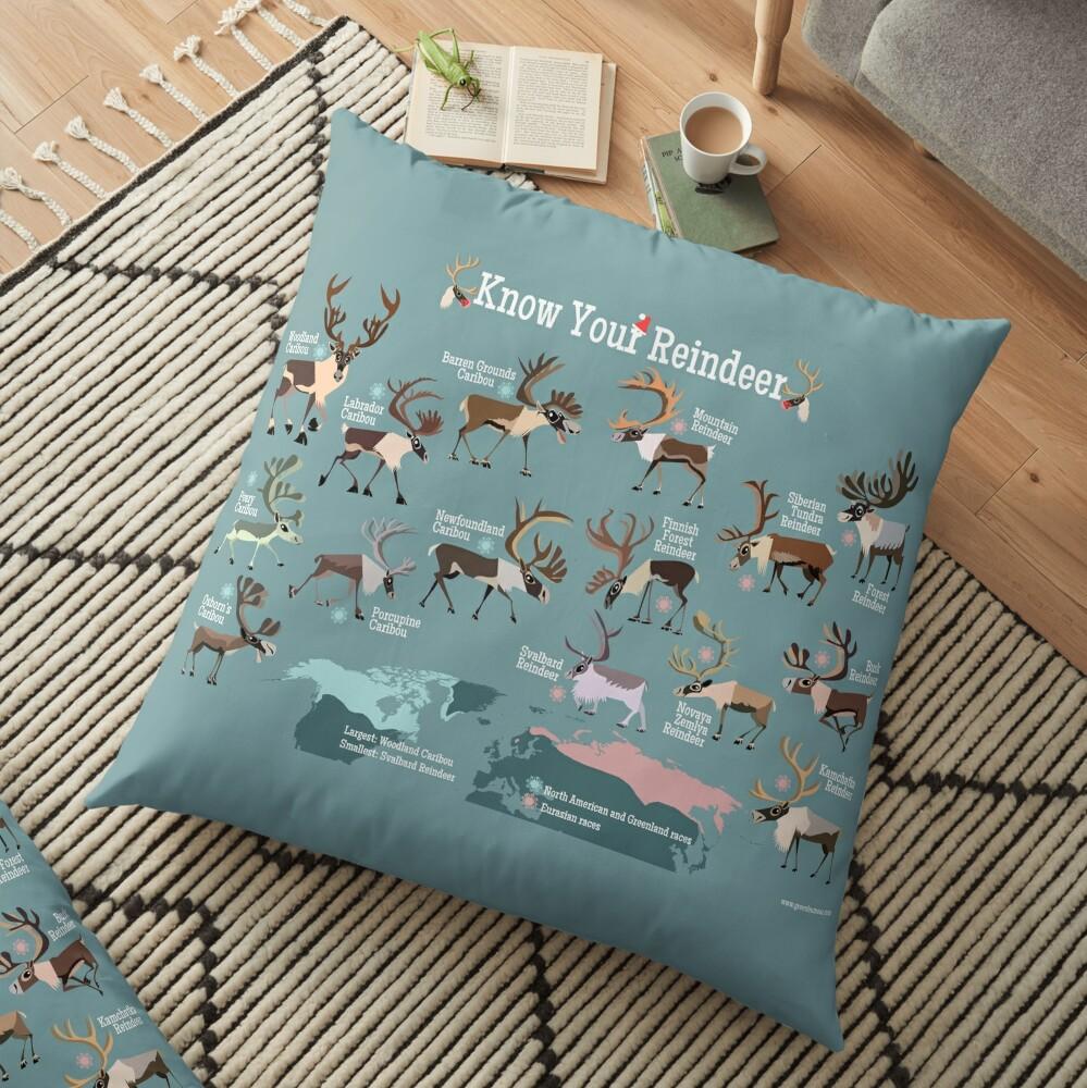 Know Your Reindeer Floor Pillow