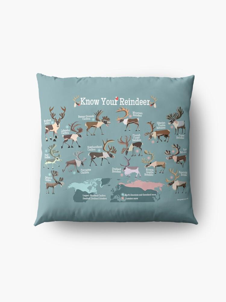 Alternate view of Know Your Reindeer Floor Pillow