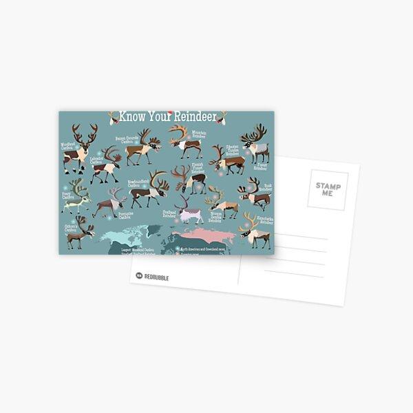 Know Your Reindeer Postcard