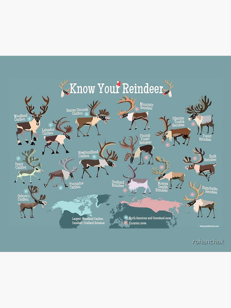 Know Your Reindeer by rohanchak