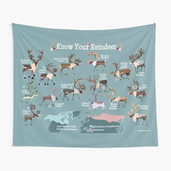 Know Your Reindeer Tapestry
