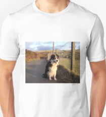 Out and about with Laddie. T-Shirt