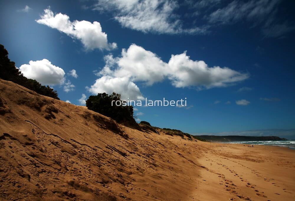 rye back beach by Rosina  Lamberti