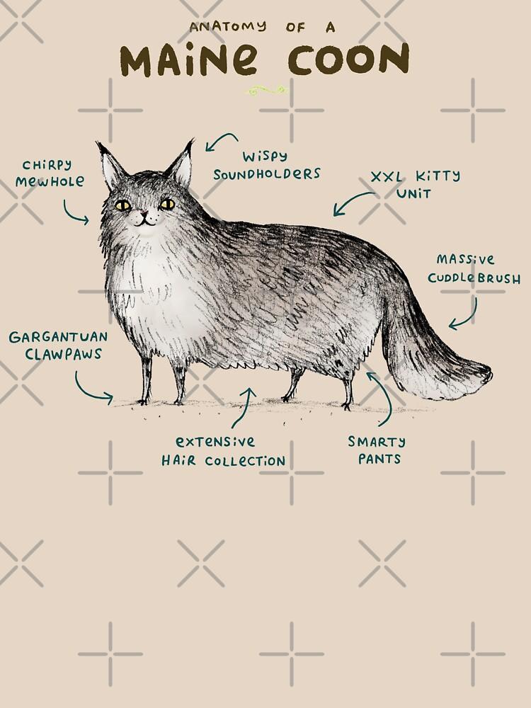 Anatomie einer Maine Coon von SophieCorrigan