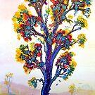 The Rainbow Tree by Linda Callaghan