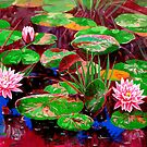 Water lily by liboart