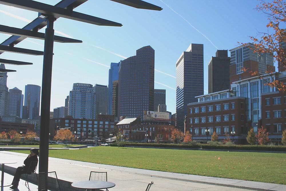 Boston Nov. 2008 by John Wood
