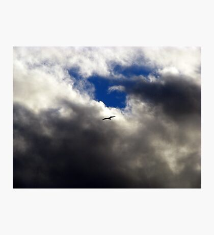 Where Eagles Fly Photographic Print