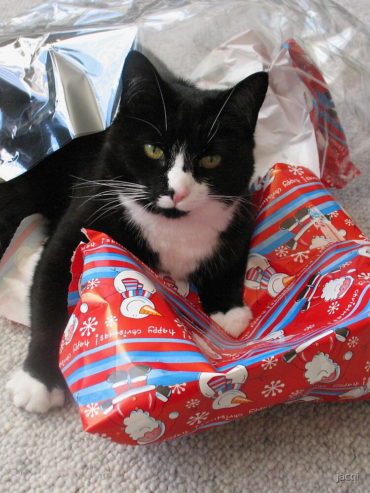 I can't find my present in here! by jacqi