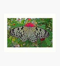 Paper Kite Art Print