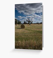 Make Hay Greeting Card