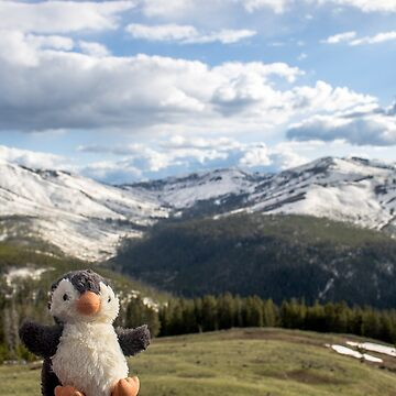 Pengweng at the mountains in Yellowstone by Pengweng