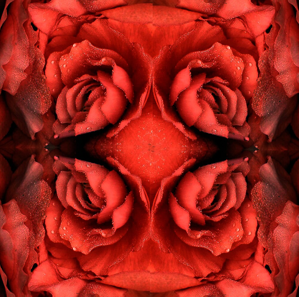 Red Begonia Montage by Virginia Maguire