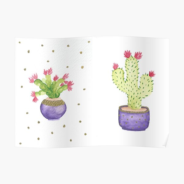 Blooming Cacti in Purple Pots Poster