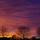 Fire in the Sky by Francis Drake