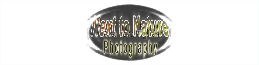 Next To Nature Photography by Denise Tyler