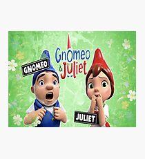 Gnomeo and Juliet Photographic Print