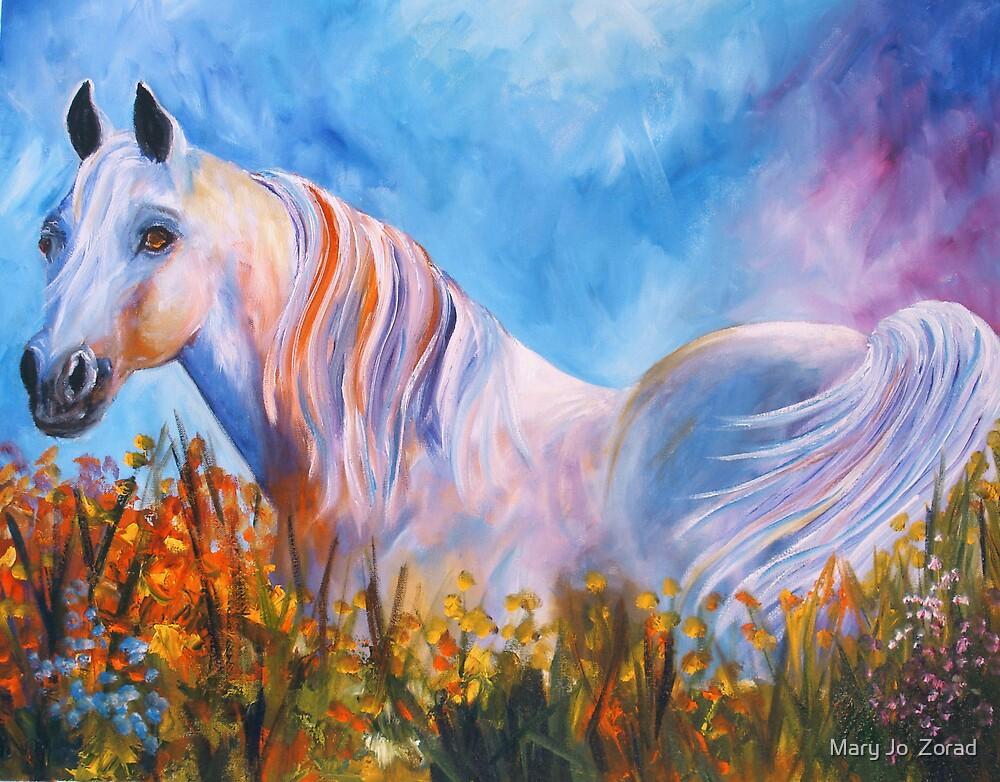 White Arabian Splendor by Mary Jo  Zorad