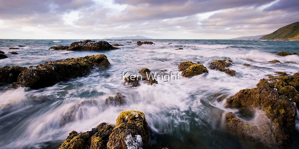 Tern Haven by Ken Wright