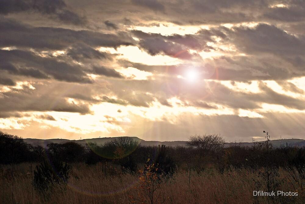 Field Of Dreams by Dfilmuk Photos