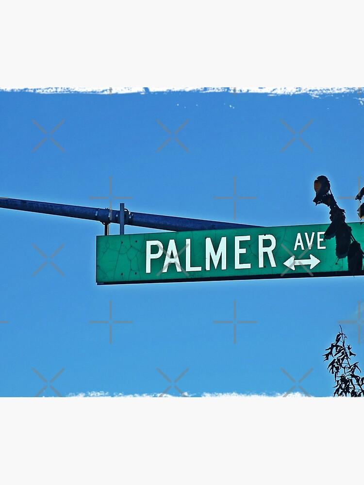 Palmer by PicsByMi