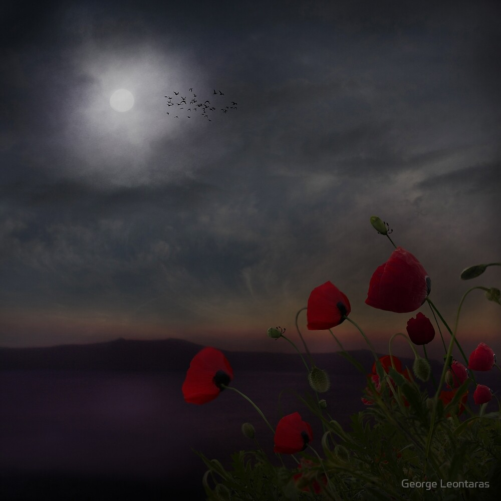 Night observers by George Leontaras