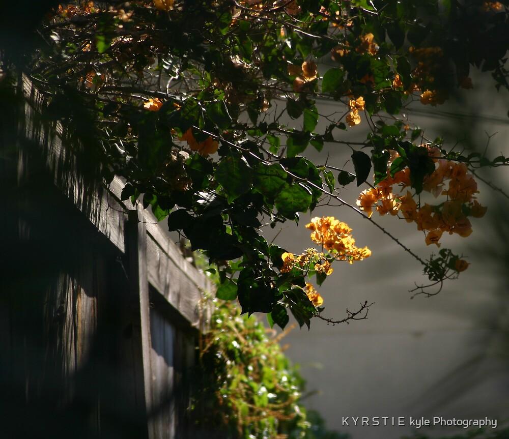 there are places I remember by K Y R S T I E  kyle Photography
