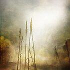 Toward the Light by anartfulsoul