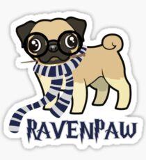 Ravenpaw Sticker
