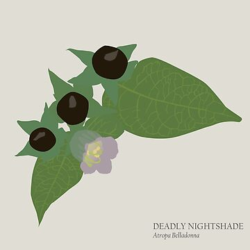 Deadly Nightshade by MogPlus
