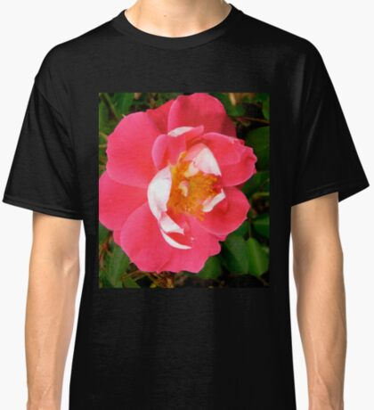 Governor General's rose 6 Classic T-Shirt